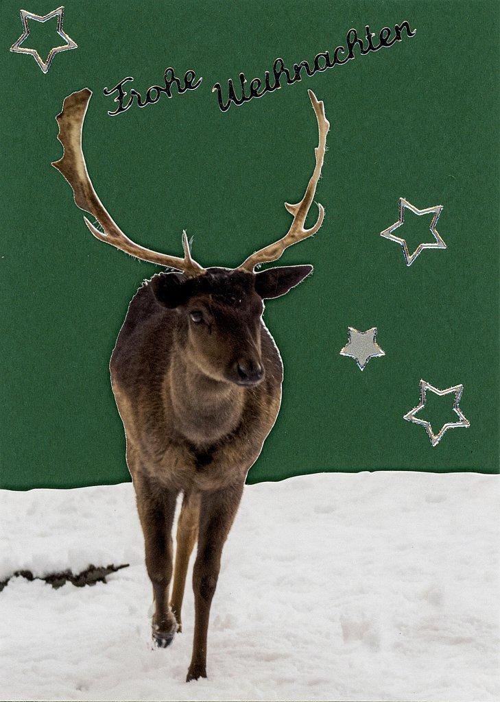 Weihnachtskarte Hirsch, 2,50 €