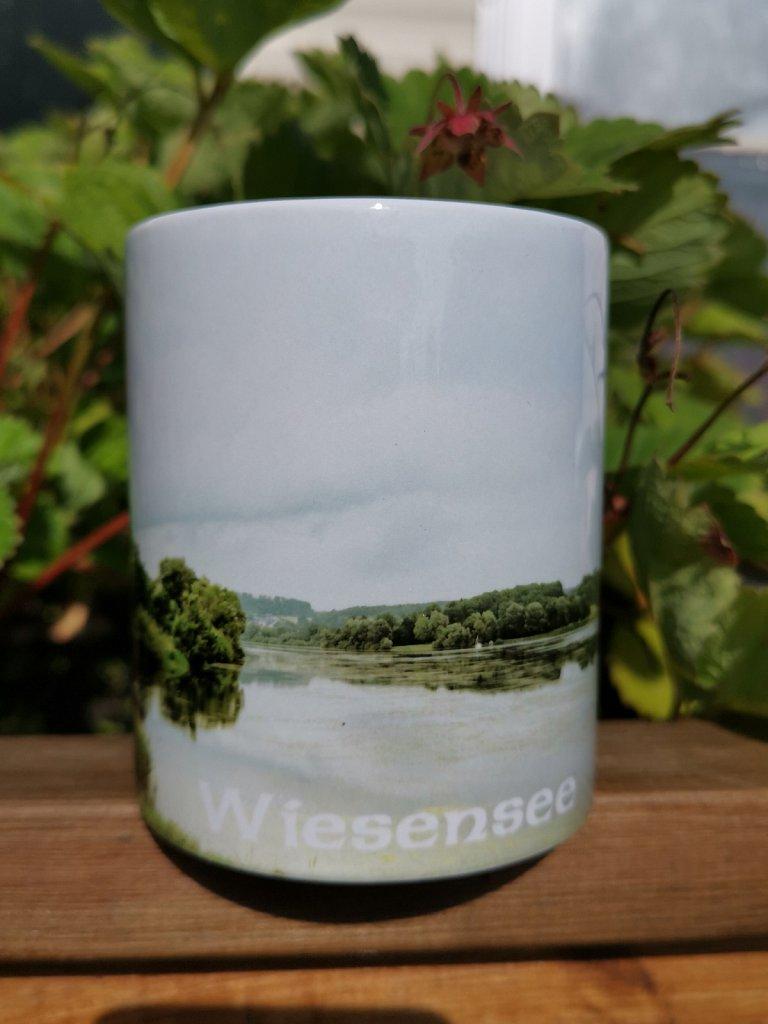 Panorama - Tasse vom Wiesensee in Stahlhofen a. W. Preis je Tasse: 9,50 €