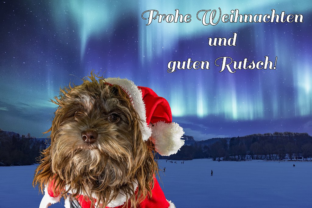 Weihnachtsgruesse-2019.jpg